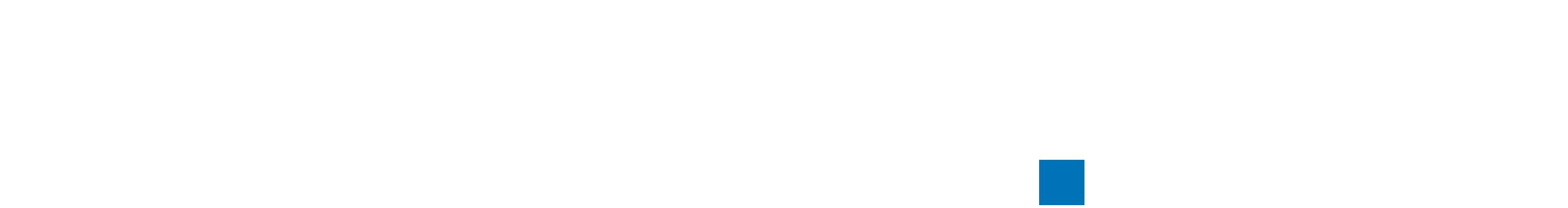 BELAIO-Logo-weiß